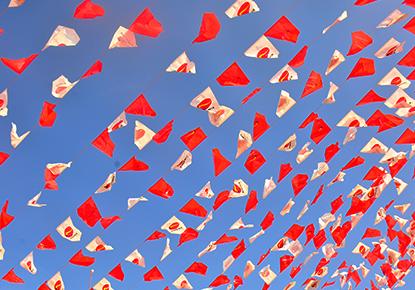 Phoenix Flags