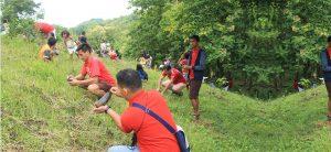 Phoenix Fuels PH - Tree Planting
