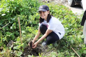 Phoenix Petroleum 8,000 plants trees in CDO